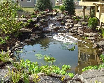 Pond Installations - Jackson CA